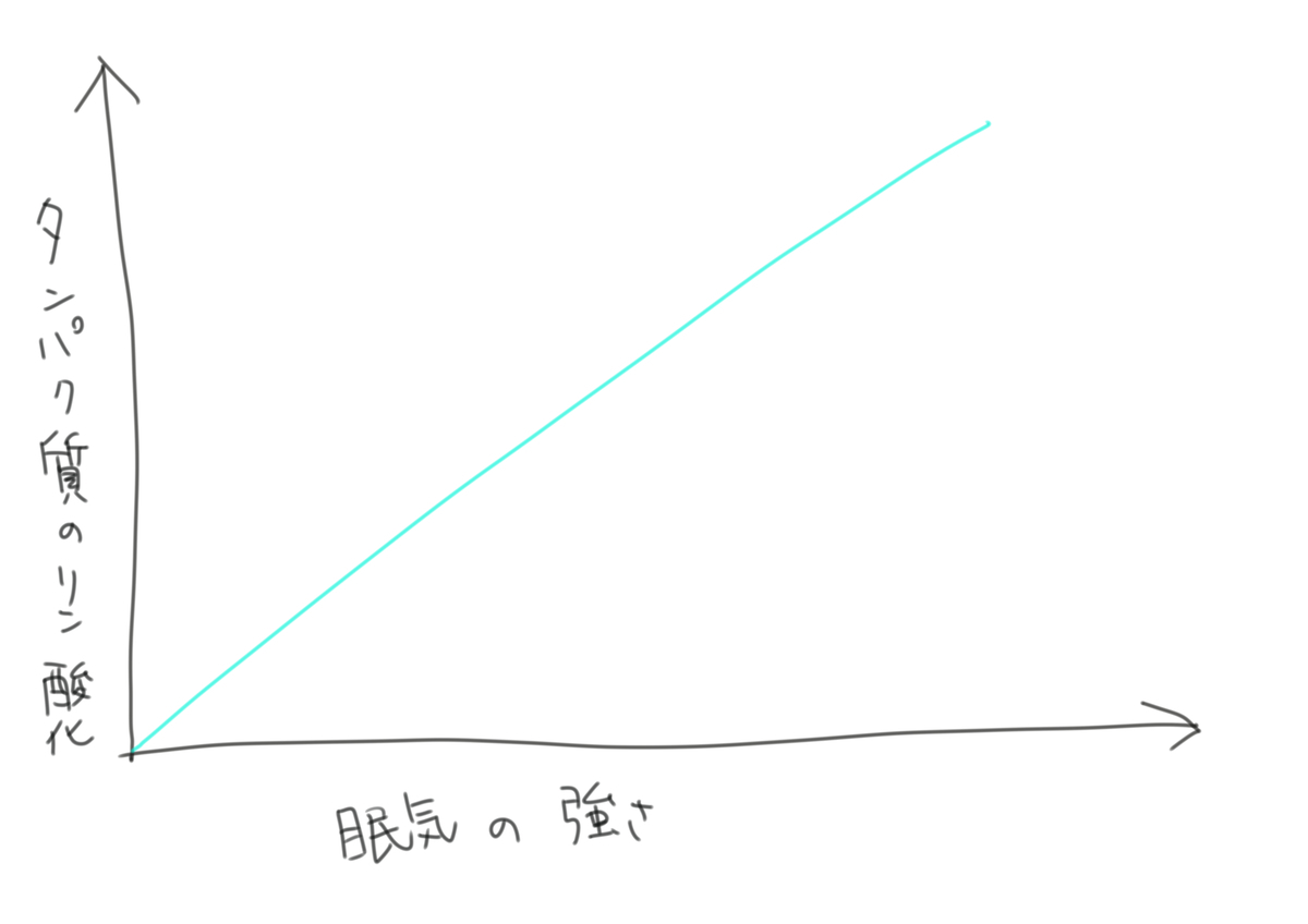 f:id:kago486:20190513230536j:plain