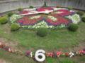 岡崎公園の花時計