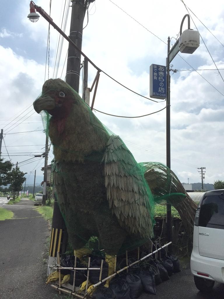 鹿児島鶏さしお好み饅頭あきらの店