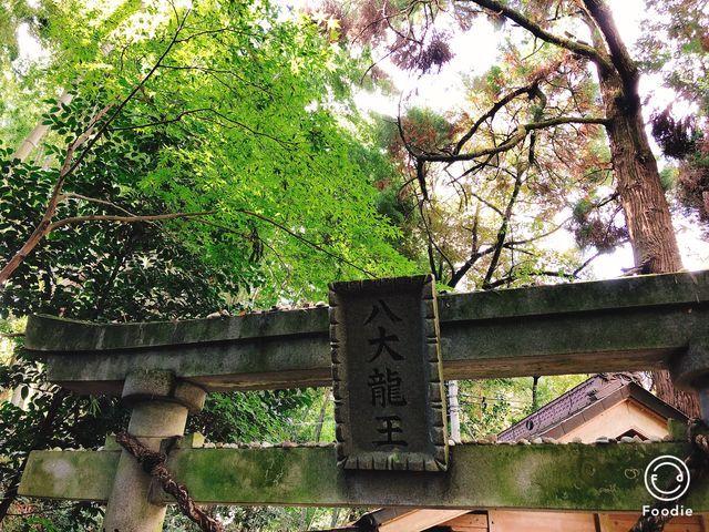 熊本神社巡りパワースポット龍神様神龍八大龍王神社菊池市