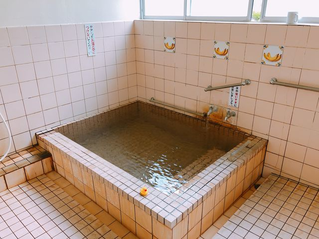 宮崎温泉家族湯吹上温泉えびの市