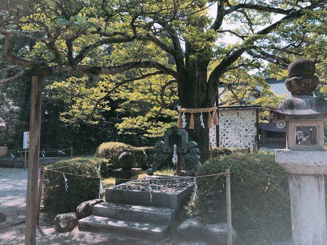 宮崎御朱印神社小戸神社宮崎市オリックスバッファロー