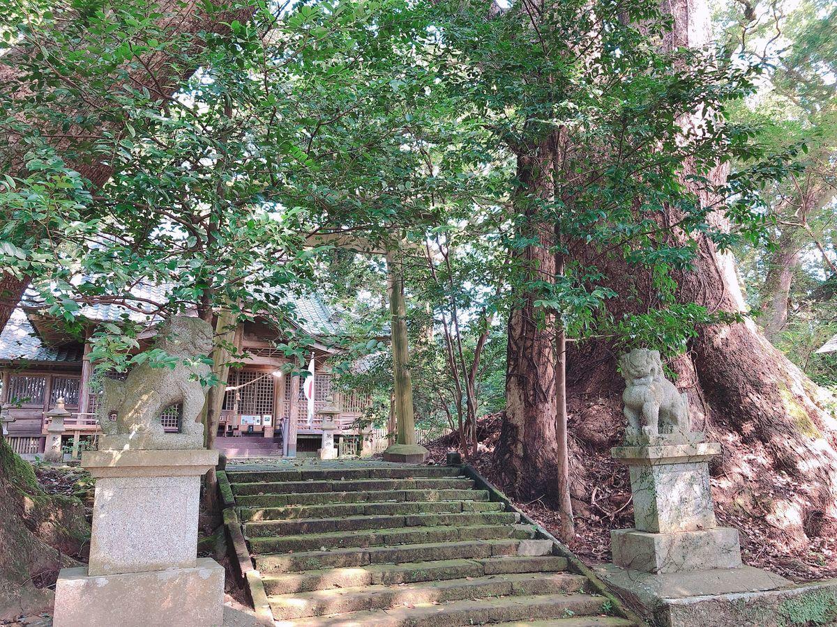 宮崎御朱印巡りブログ八幡神瓜生野宮崎市