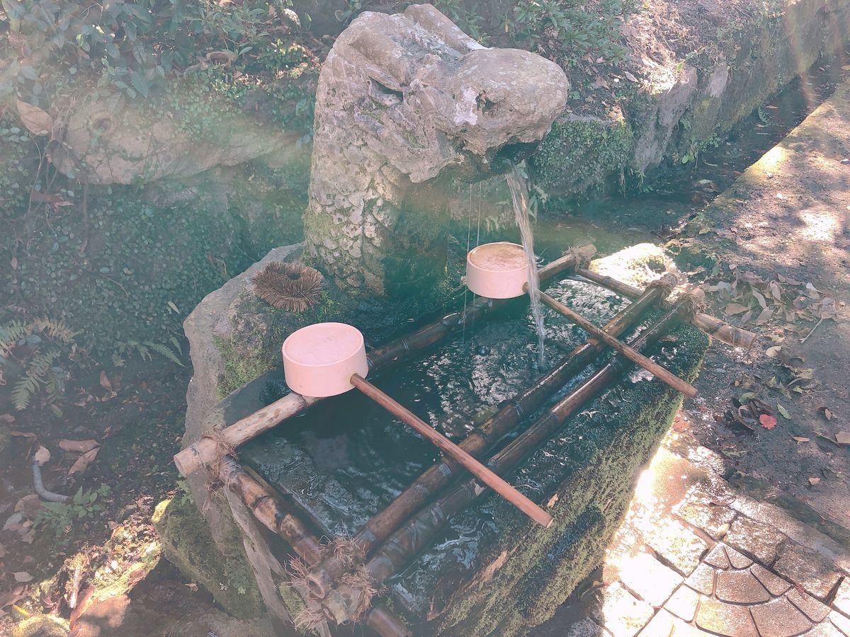 鹿児島御朱印巡りブログ牛(ベブ) お田植え祭止上神社霧島市