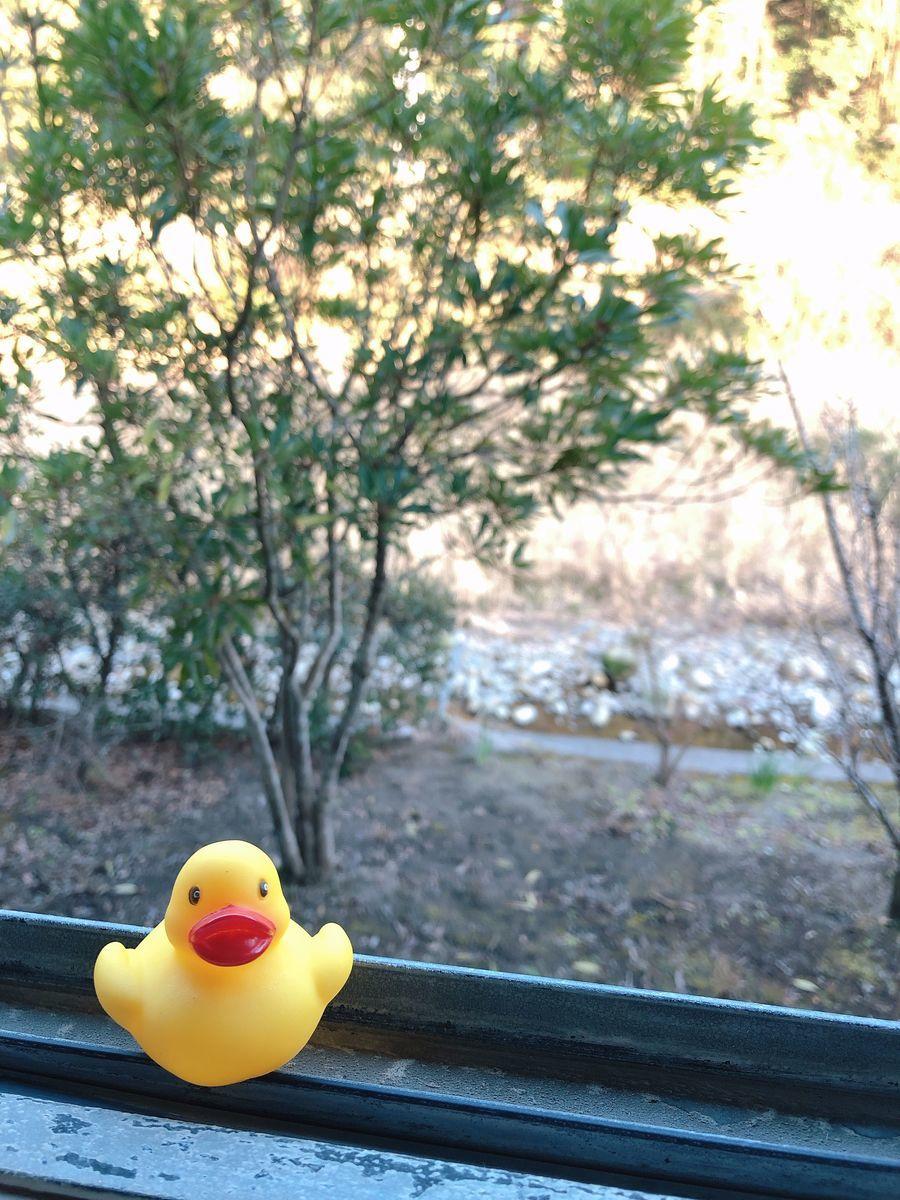 鹿児島温泉巡りブログ家族湯かれい川の湯霧島市隼人町