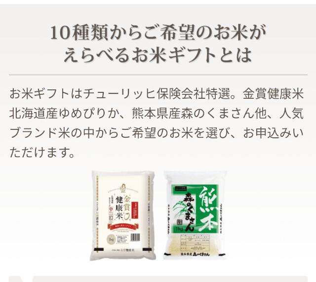 f:id:kagoro0831:20210405143041j:plain