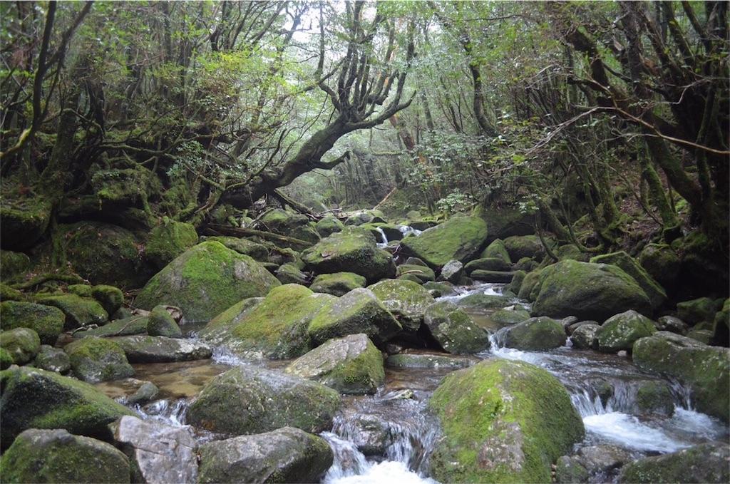 f:id:kagoshima384:20160323182119j:image