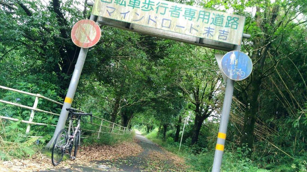 f:id:kagoshimabengoshi:20190131153510j:plain