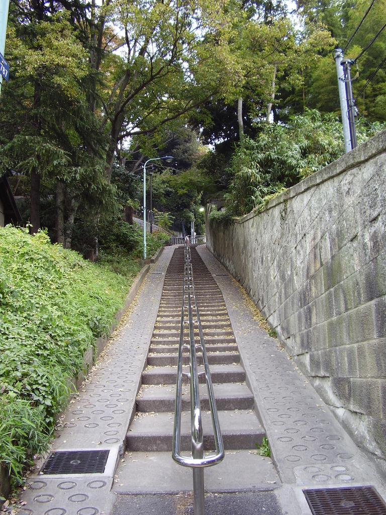 f:id:kagoshimabengoshi:20190202163415j:plain