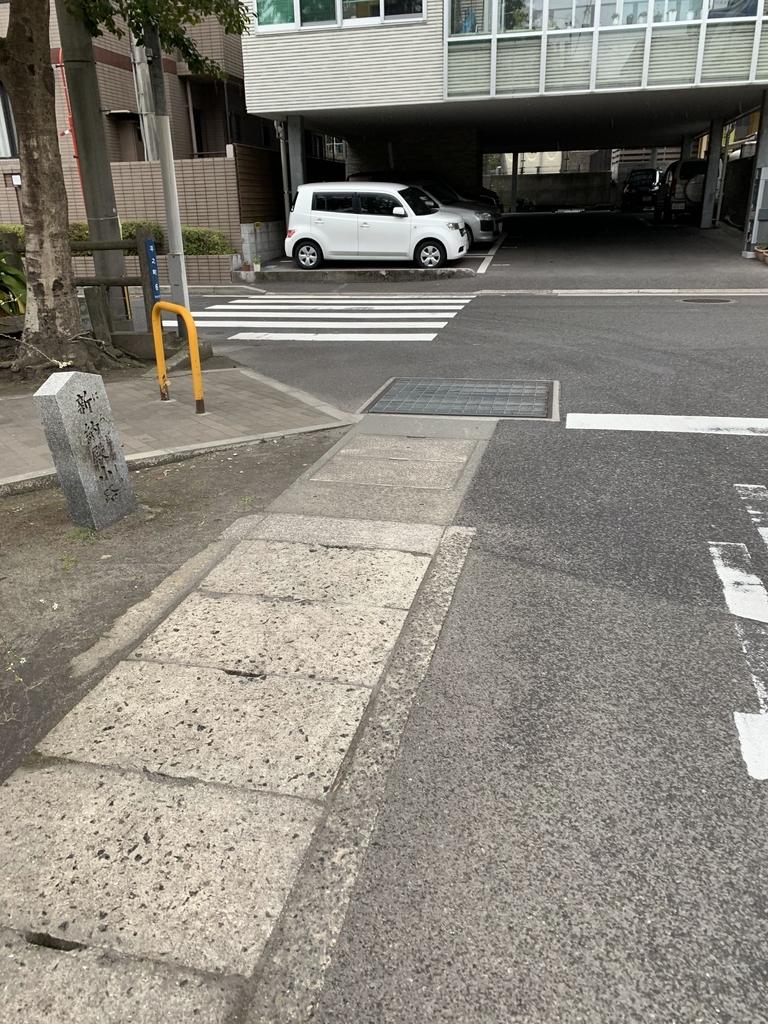 f:id:kagoshimabengoshi:20190212130644j:plain