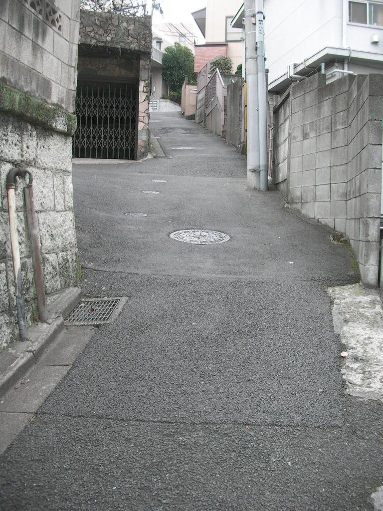 f:id:kagoshimabengoshi:20190216154014j:plain