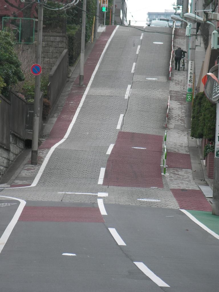 f:id:kagoshimabengoshi:20190216163343j:plain