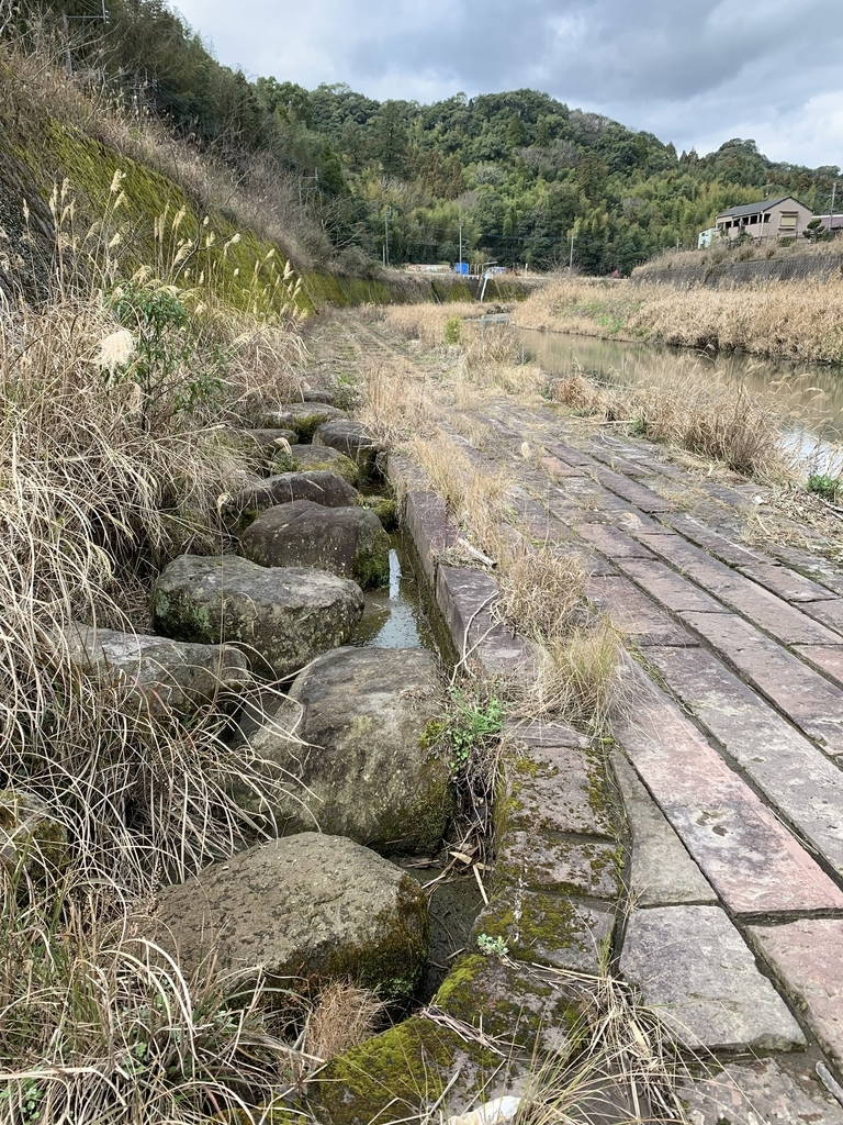 f:id:kagoshimabengoshi:20190221104904j:plain