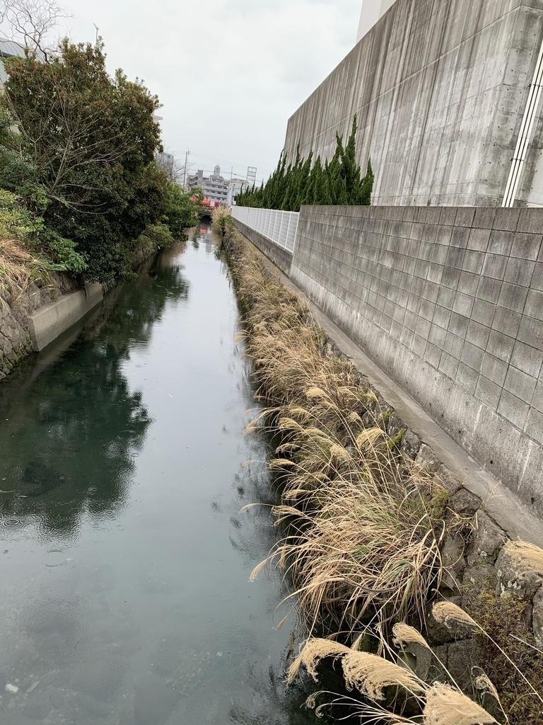f:id:kagoshimabengoshi:20190224140549j:plain