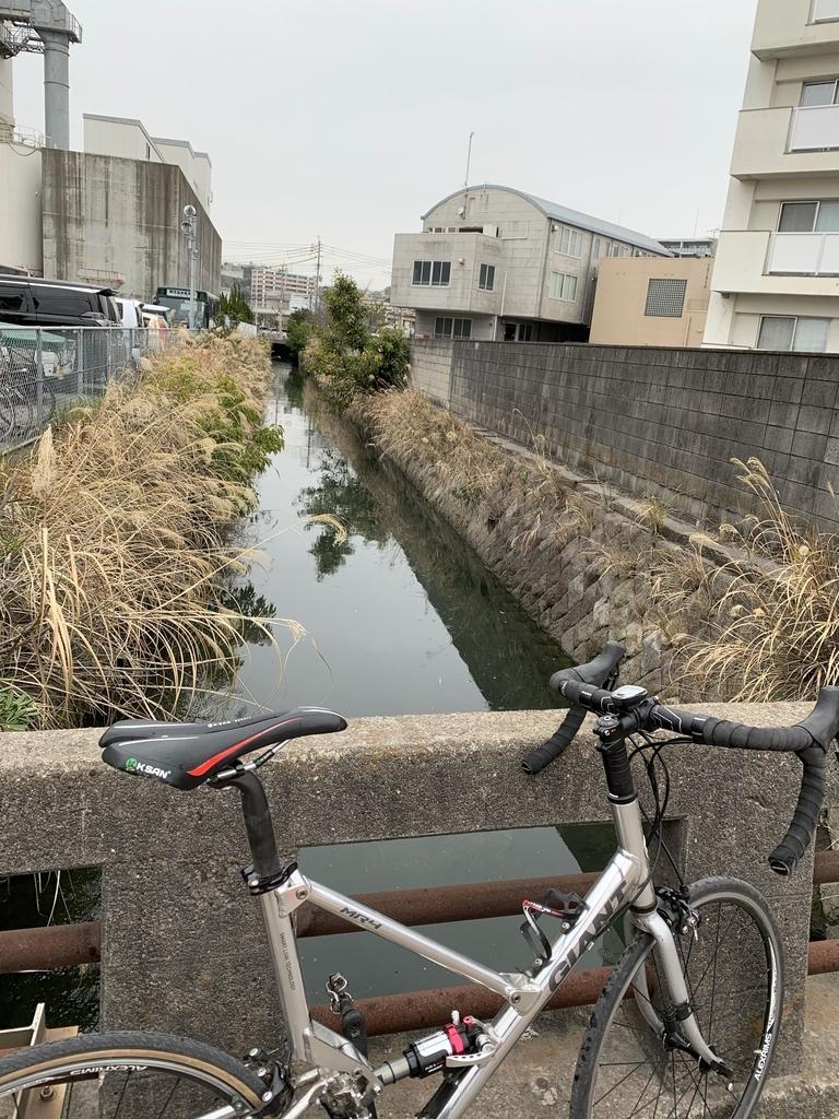 f:id:kagoshimabengoshi:20190224140615j:plain