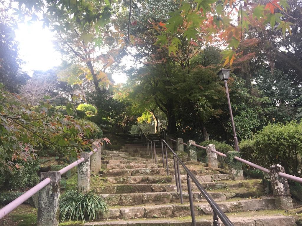 f:id:kagoshimayoshiko:20161208100637j:image