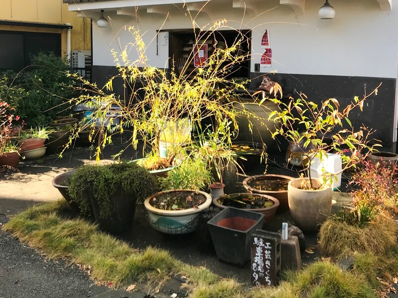 f:id:kaguisu:20191210071217j:plain