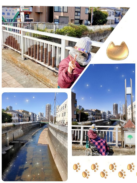 f:id:kahochan_blog:20210227214351j:image