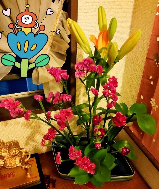 f:id:kahochan_blog:20210331222201j:image
