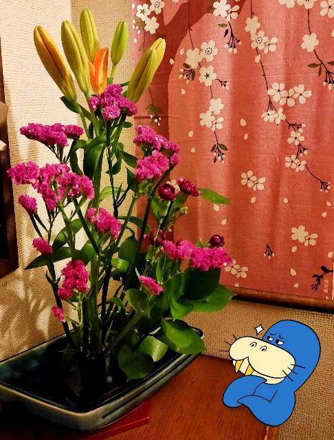 f:id:kahochan_blog:20210331222226j:image