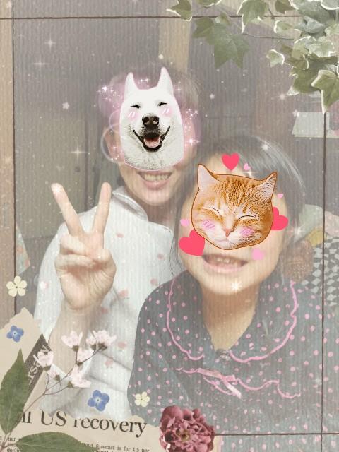 f:id:kahochan_blog:20210414220718j:image