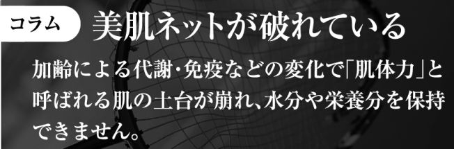 f:id:kahoko1212:20191129201149j:plain
