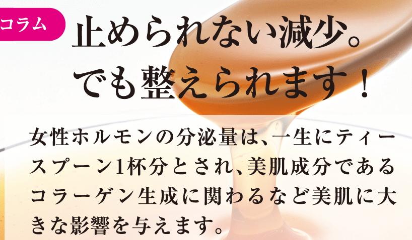 f:id:kahoko1212:20191129201439j:plain