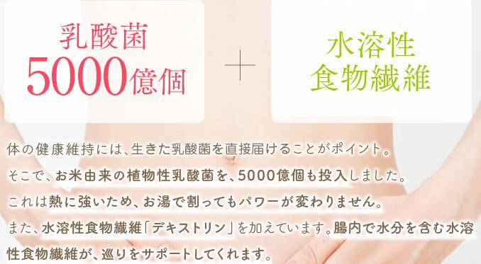 f:id:kahoko1212:20191204203502p:plain