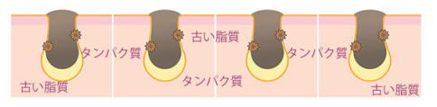 f:id:kahoko1212:20200703151242j:plain