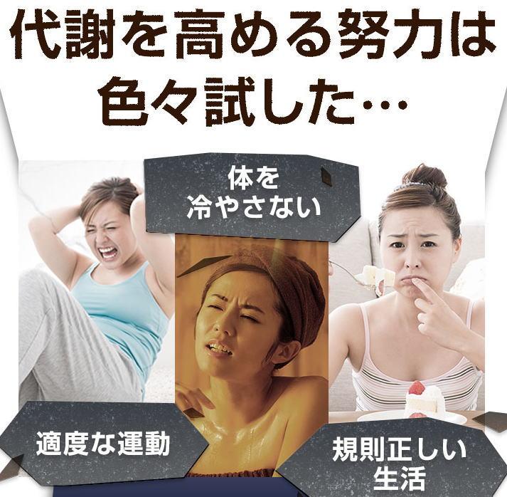 f:id:kahoko1212:20210104153427j:plain