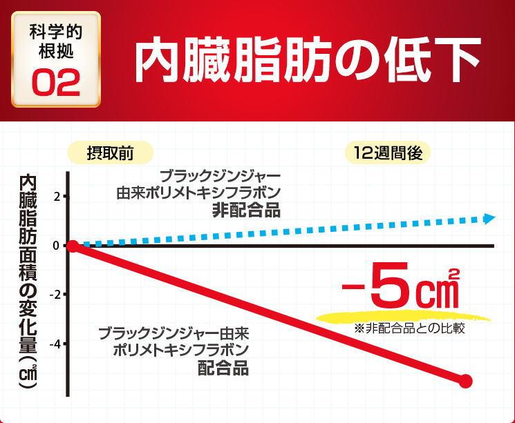 f:id:kahoko1212:20210105113535j:plain