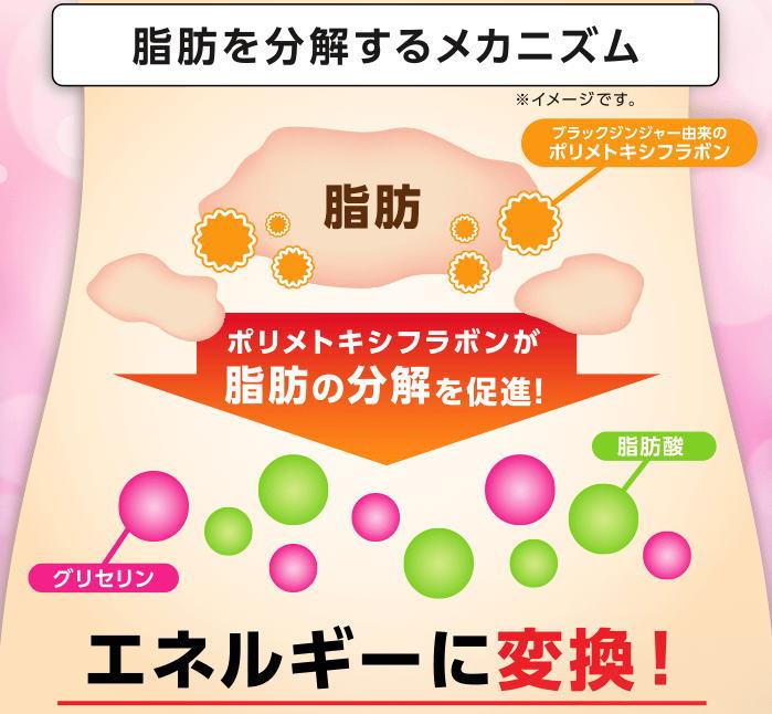 f:id:kahoko1212:20210105184136j:plain