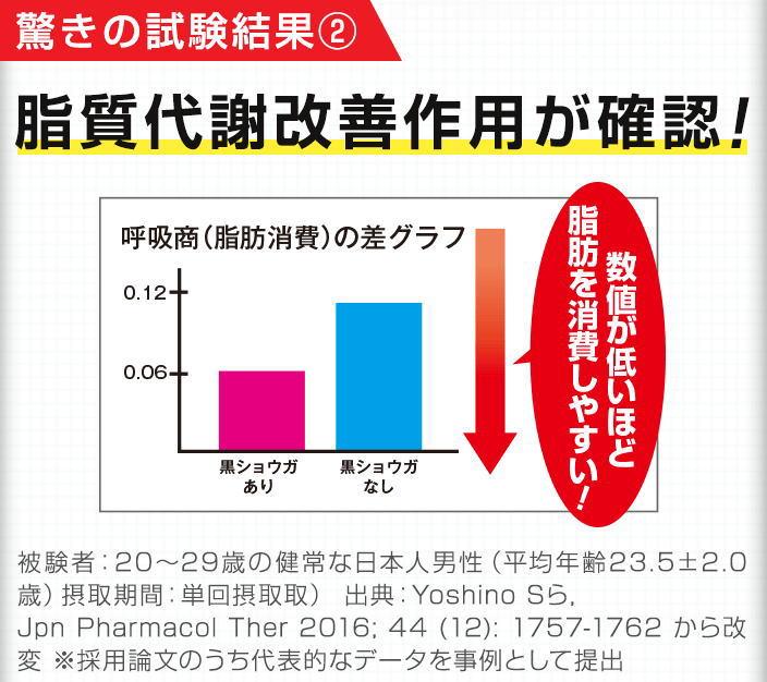 f:id:kahoko1212:20210105200635j:plain