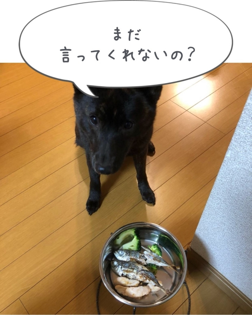 f:id:kai-koume:20171225155519j:plain