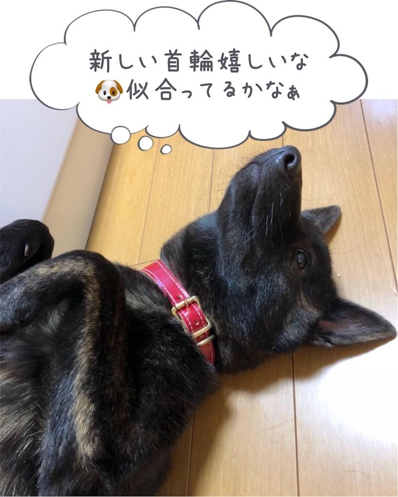 f:id:kai-koume:20180113104841j:image