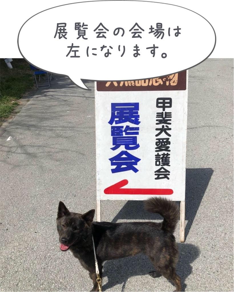 f:id:kai-koume:20180403080213j:image