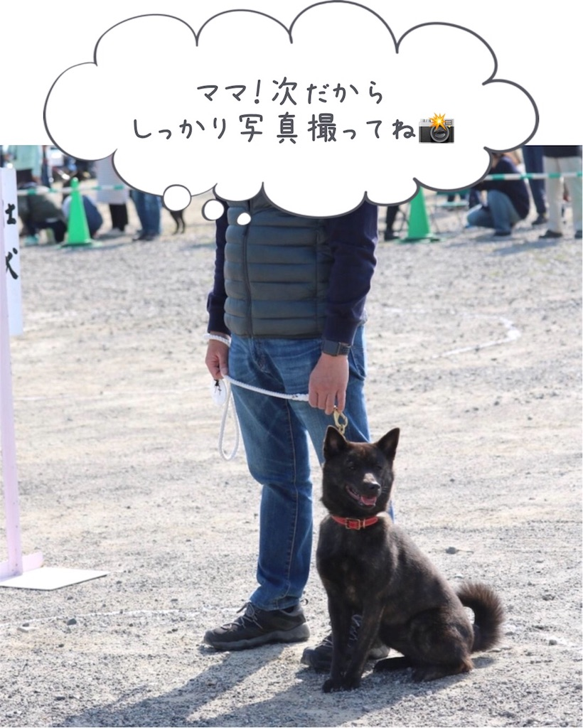 f:id:kai-koume:20180403185234j:image