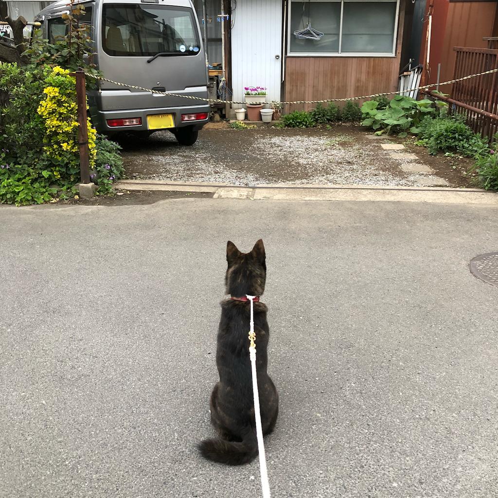 f:id:kai-koume:20180418065549p:image