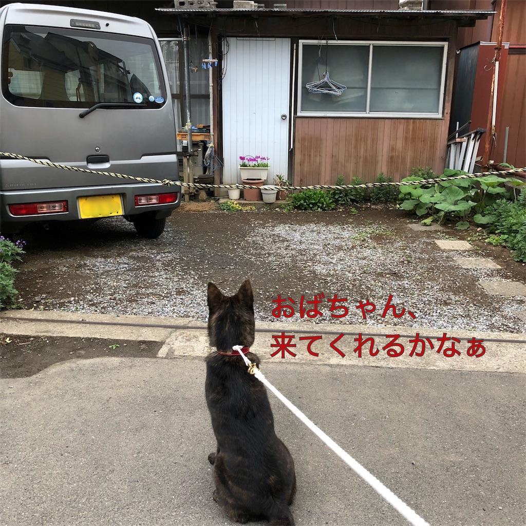 f:id:kai-koume:20180418065748j:image