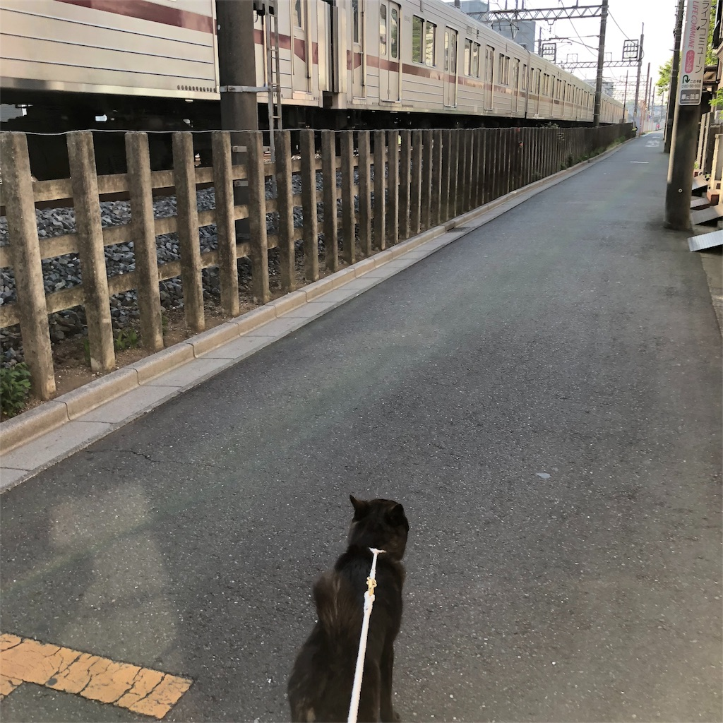 f:id:kai-koume:20180421213514j:image