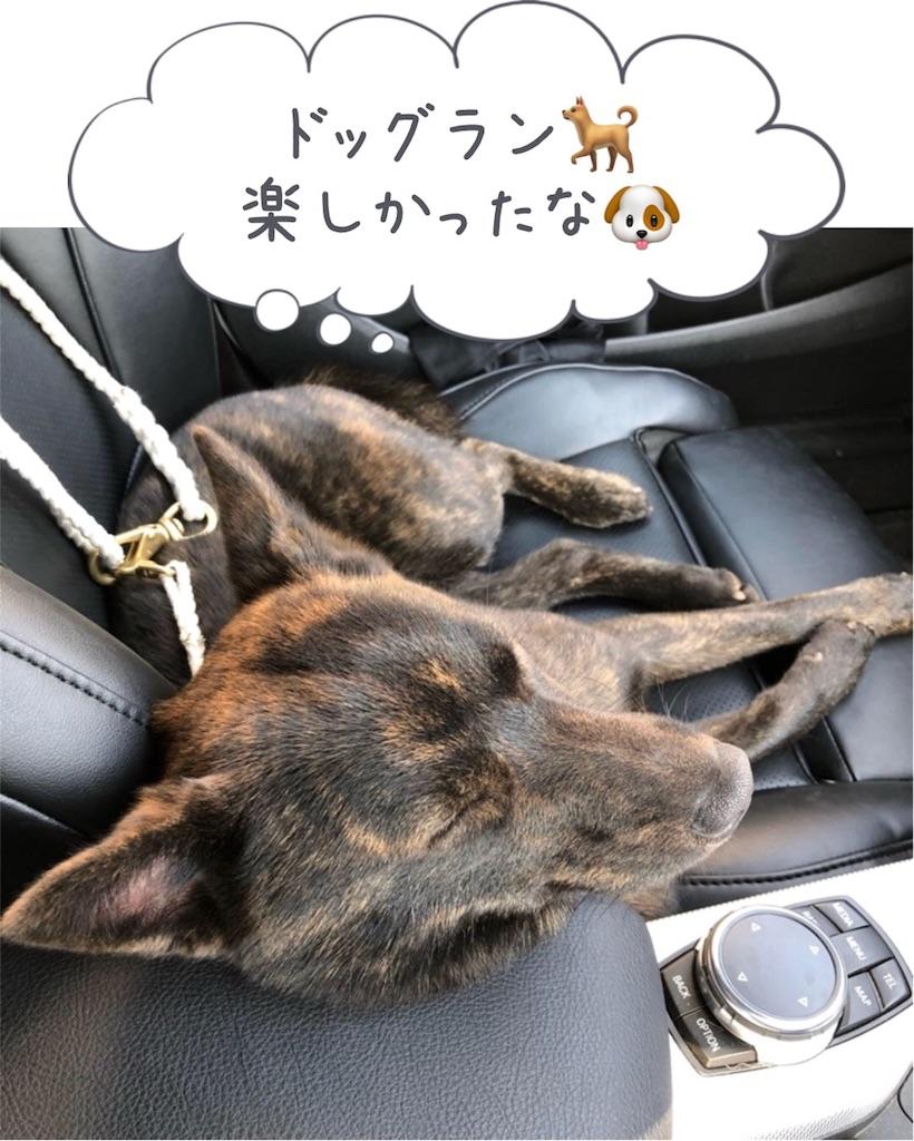 f:id:kai-koume:20180422160817j:image