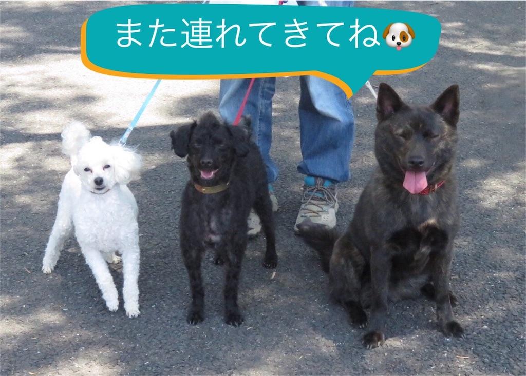f:id:kai-koume:20180506134002j:image