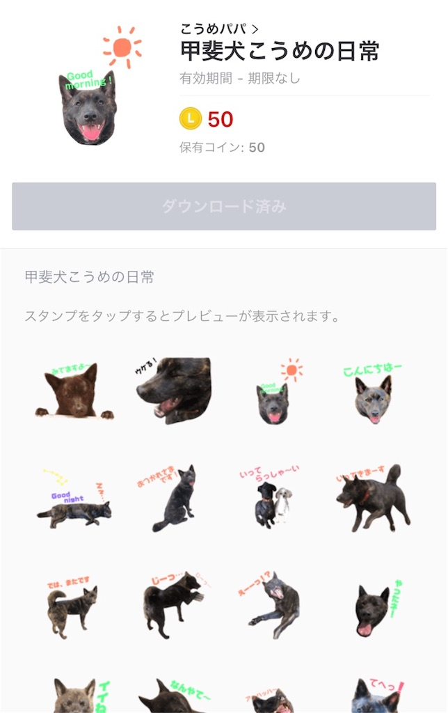 f:id:kai-koume:20180628074906j:image