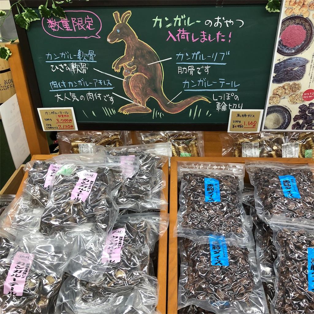 f:id:kai-koume:20180701152920j:image