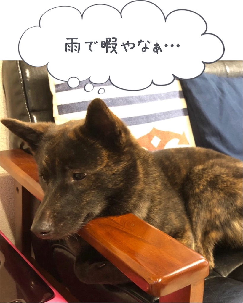 f:id:kai-koume:20180705075327j:image
