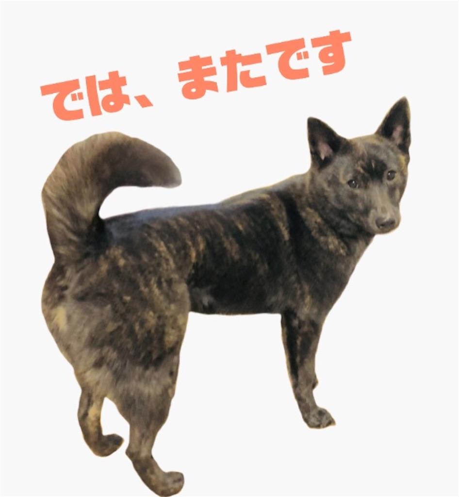 f:id:kai-koume:20180707111225j:image