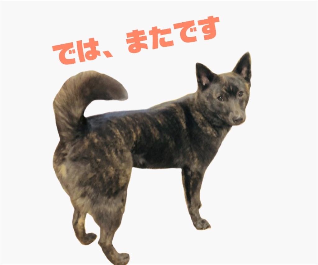 f:id:kai-koume:20180715070345j:image