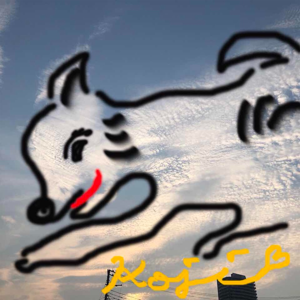 f:id:kai-koume:20180718135215j:image