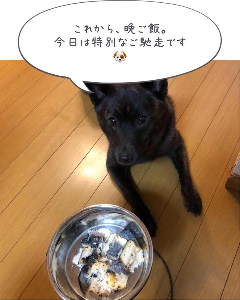 f:id:kai-koume:20180721093250j:image