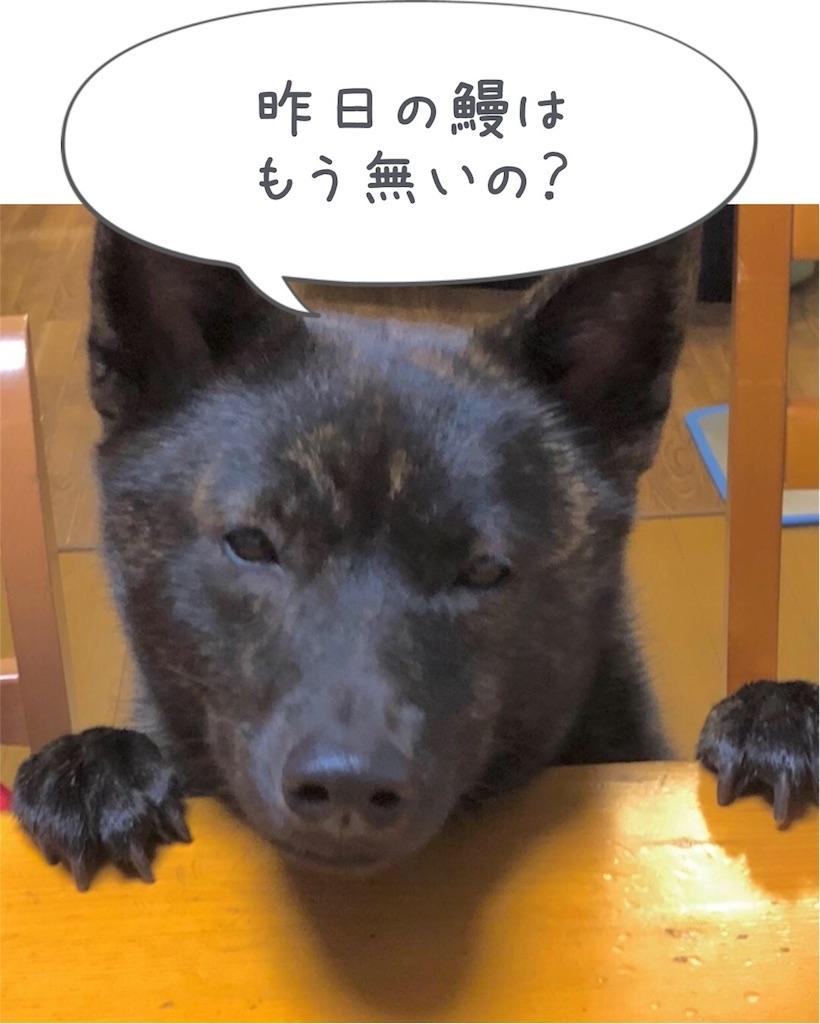 f:id:kai-koume:20180721094138j:image